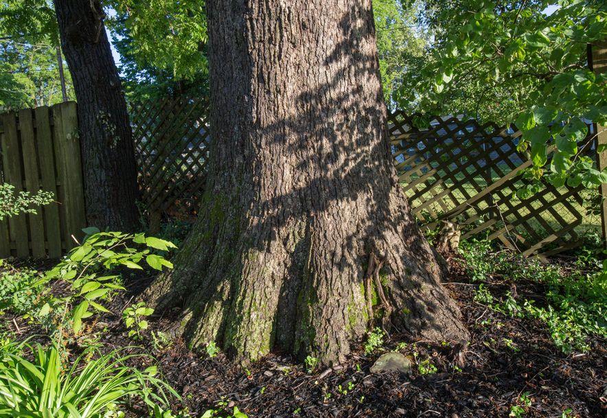 1256 Hayden Court Springfield, MO 65804 - Photo 55