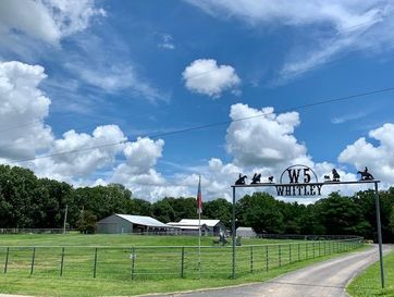 19576 Farm Road 1110 Cassville, MO 65625 - Image 1