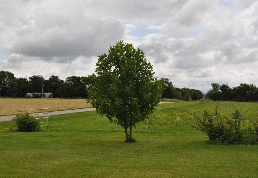5634 Highway Ab Fair Grove, MO 65648 - Photo 49