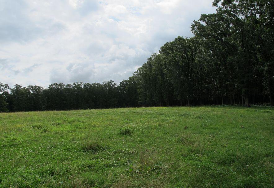 5634 Highway Ab Fair Grove, MO 65648 - Photo 58