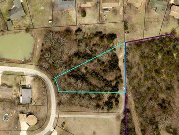0 Chisholm Trail Forsyth, MO 65653 - Image 1