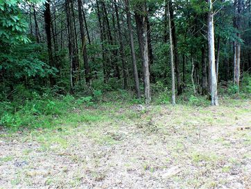 Lot 13 Monticello Road Galena, MO 65656 - Image 1