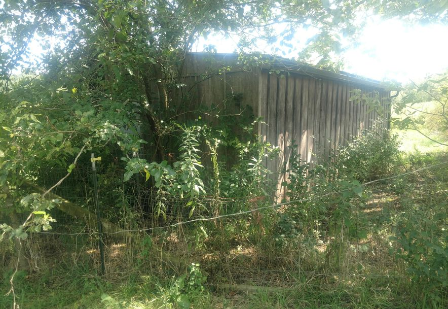 24718 Mo-174 Marionville, MO 65705 - Photo 70