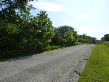 Tbd Country Meadow Road Highlandville, MO 65669 - Image 1