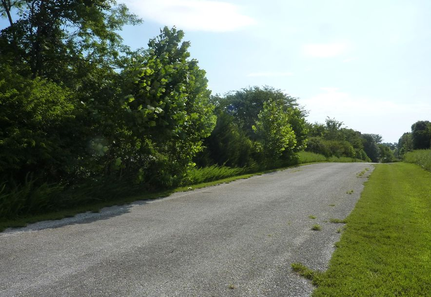 Tbd Country Meadow Road Highlandville, MO 65669 - Photo 1