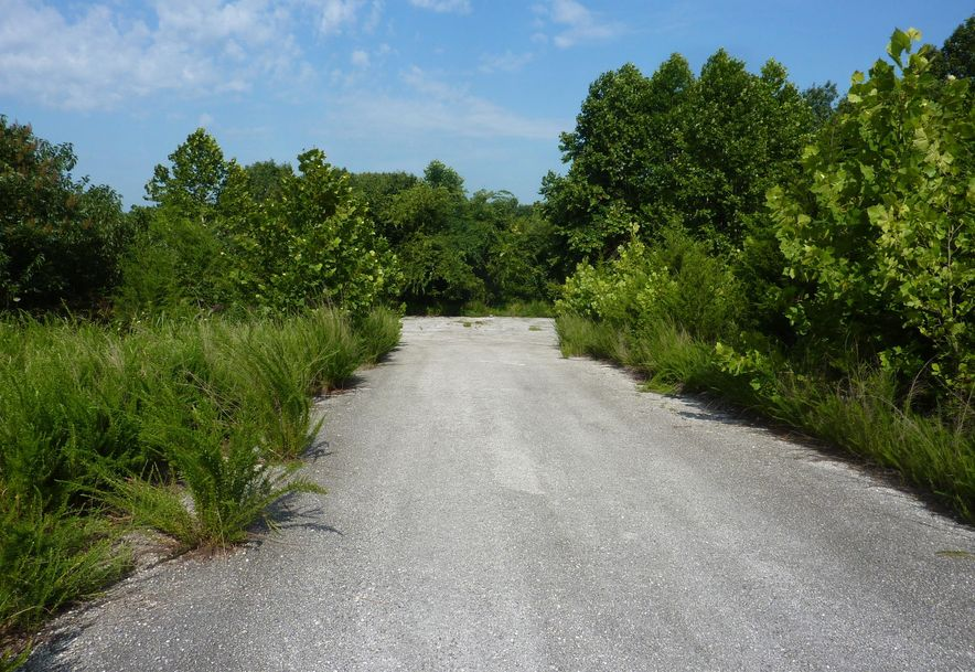Tbd Country Meadow Road Highlandville, MO 65669 - Photo 6