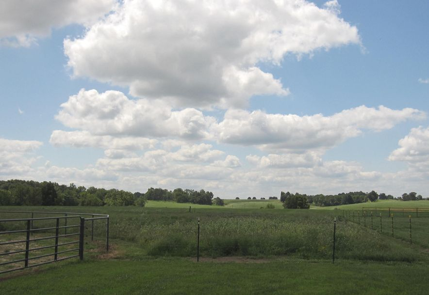 1266 South Metzletein Road Clever, MO 65631 - Photo 47