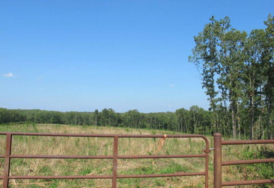 Tbd Highway Yy Norwood, MO 65717 - Photo 36