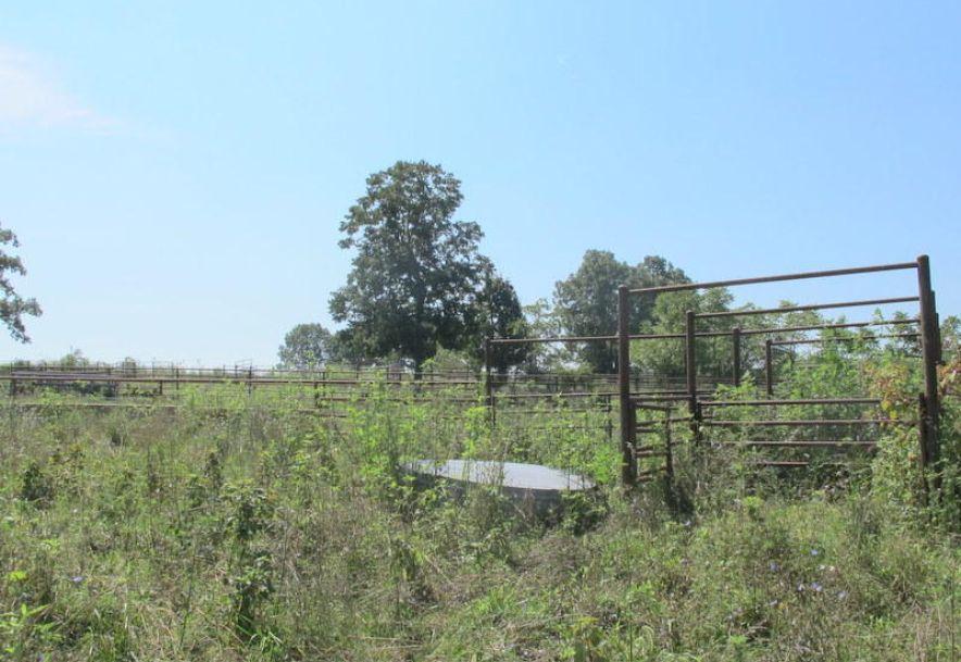 Tbd Highway Yy Norwood, MO 65717 - Photo 48