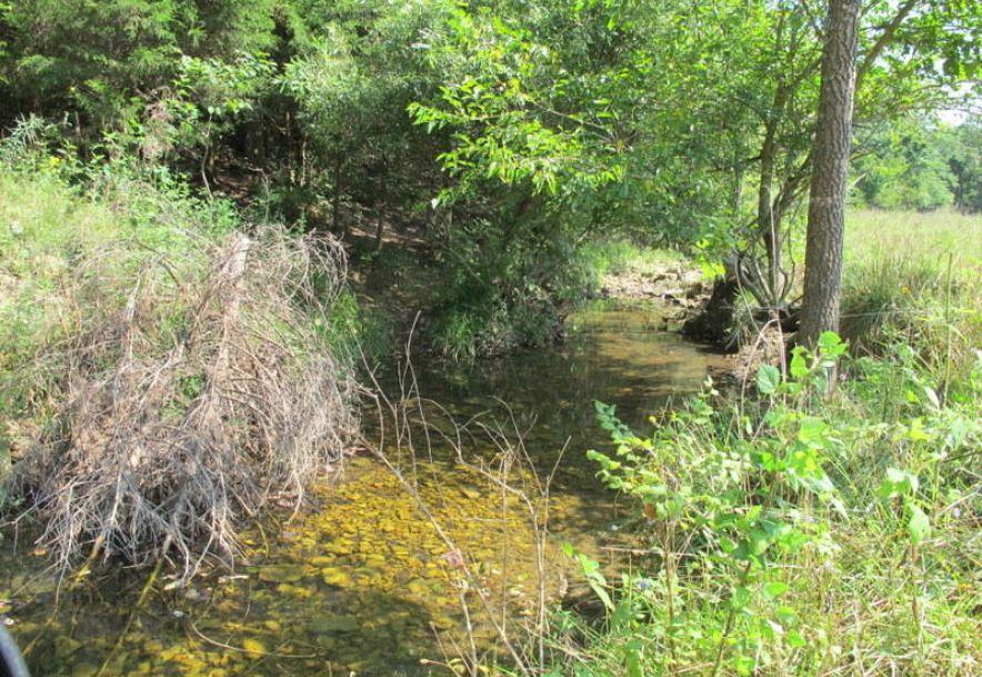 Tbd Highway Yy Norwood, MO 65717 - Photo 52