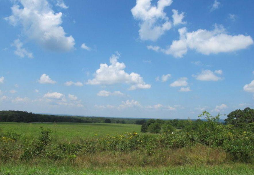 Tbd Highway Yy Norwood, MO 65717 - Photo 72