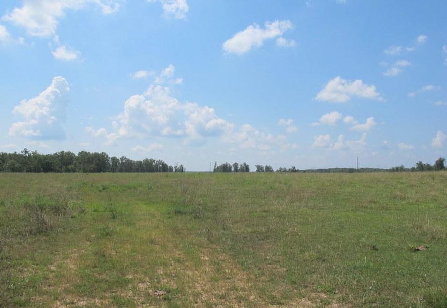 Tbd Highway Yy Norwood, MO 65717 - Photo 78