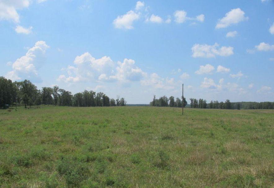 Tbd Highway Yy Norwood, MO 65717 - Photo 81