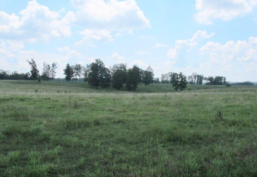 Tbd Highway Yy Norwood, MO 65717 - Photo 83