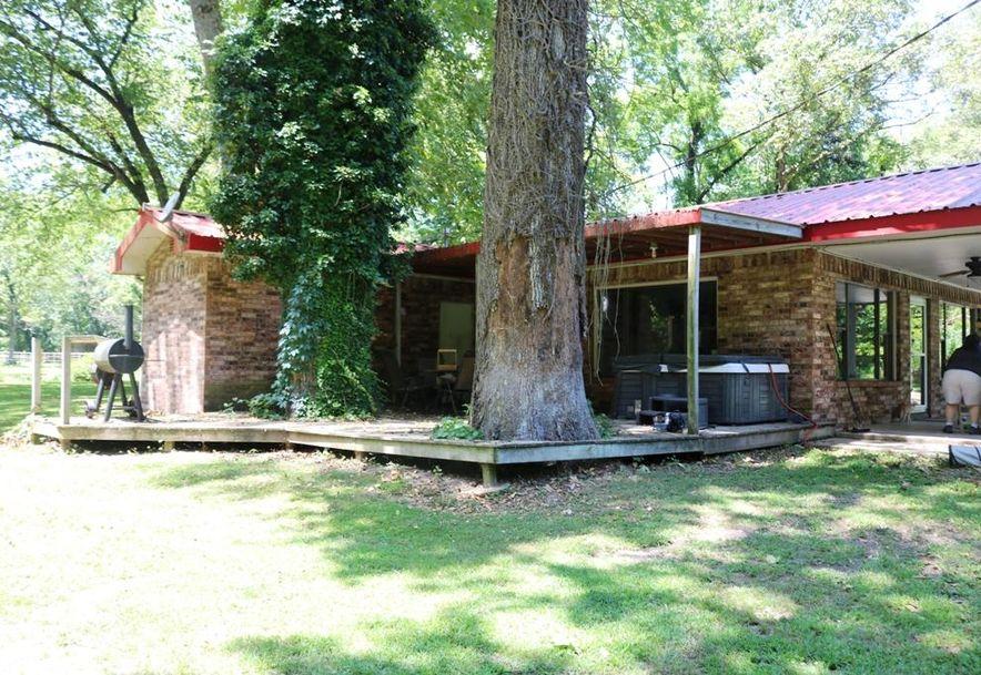 741 Pine Tree Drive Pineville, MO 64856 - Photo 21