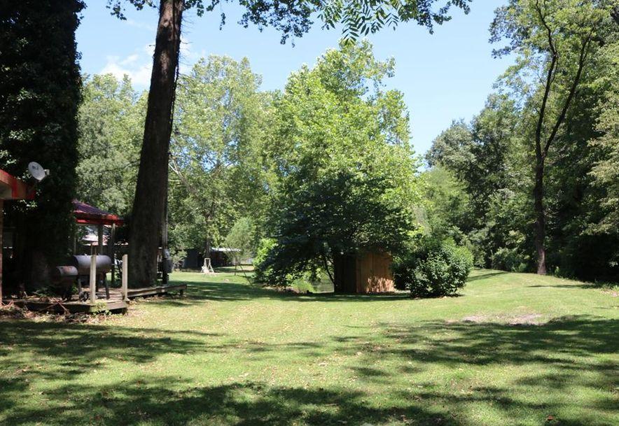 741 Pine Tree Drive Pineville, MO 64856 - Photo 29