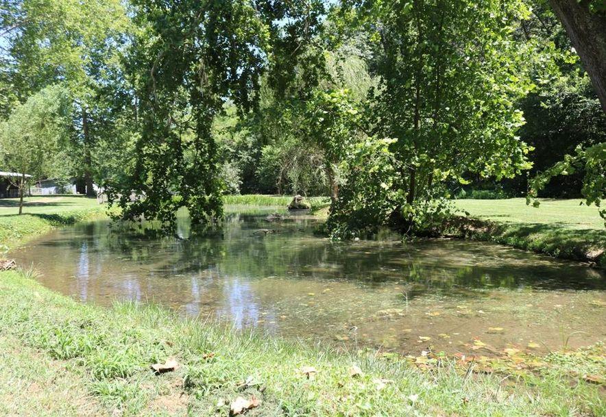 741 Pine Tree Drive Pineville, MO 64856 - Photo 31