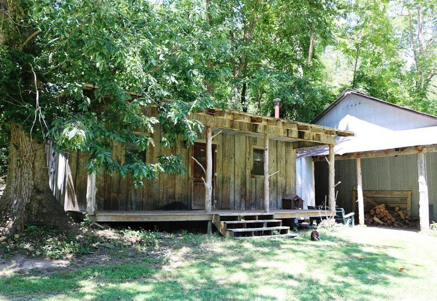 741 Pine Tree Drive Pineville, MO 64856 - Photo 32