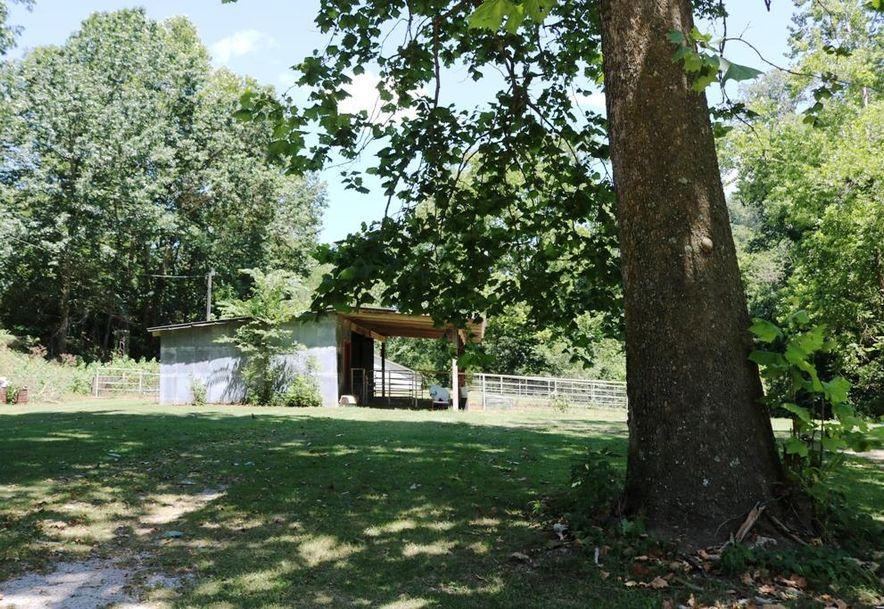 741 Pine Tree Drive Pineville, MO 64856 - Photo 34