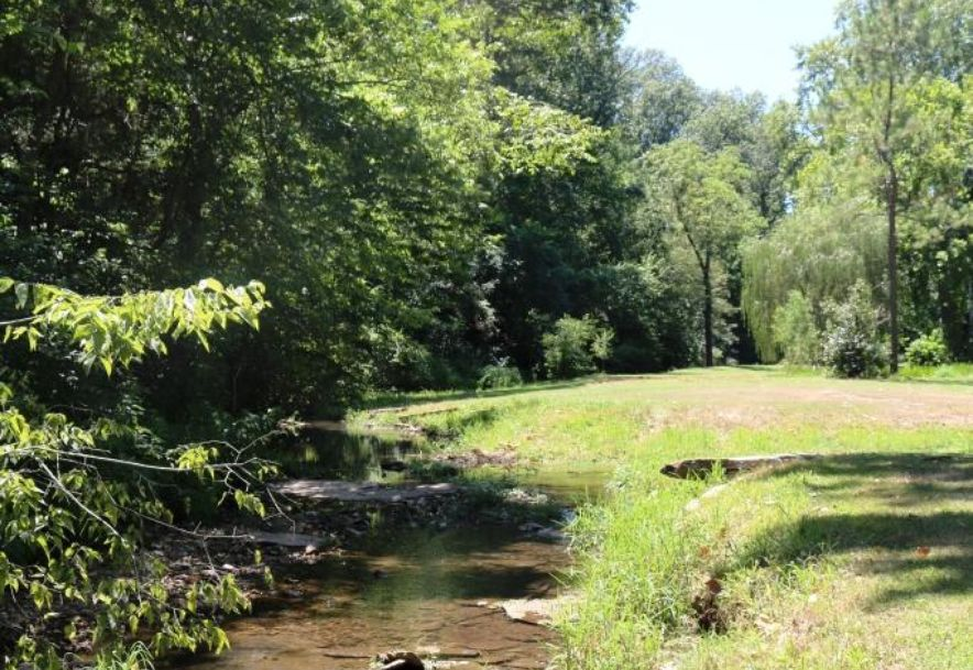 741 Pine Tree Drive Pineville, MO 64856 - Photo 38