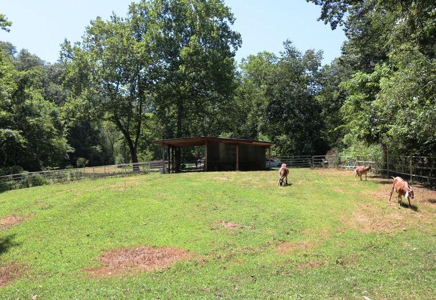 741 Pine Tree Drive Pineville, MO 64856 - Photo 44