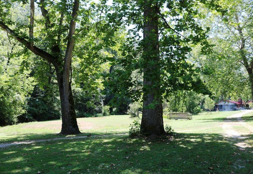 741 Pine Tree Drive Pineville, MO 64856 - Photo 46
