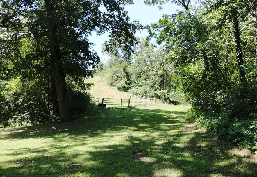 741 Pine Tree Drive Pineville, MO 64856 - Photo 47
