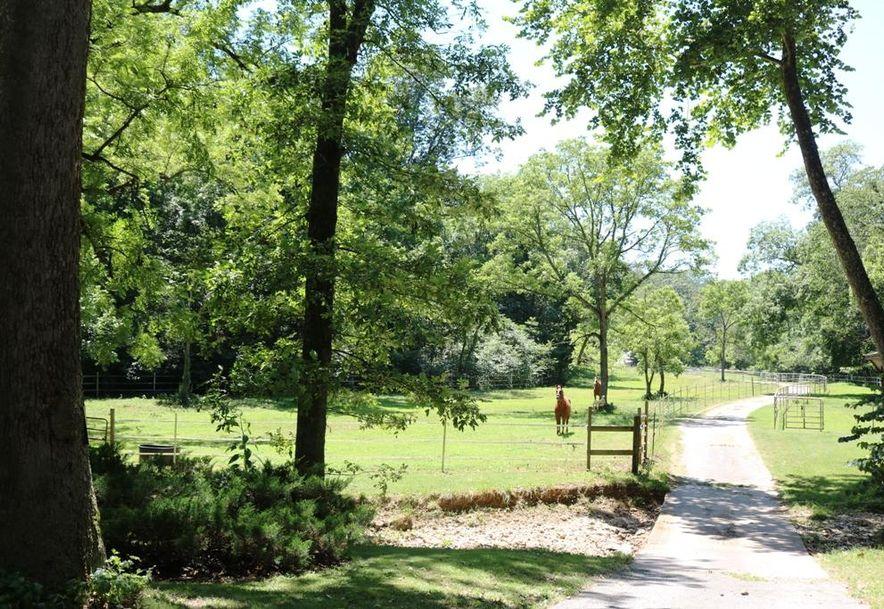 741 Pine Tree Drive Pineville, MO 64856 - Photo 48