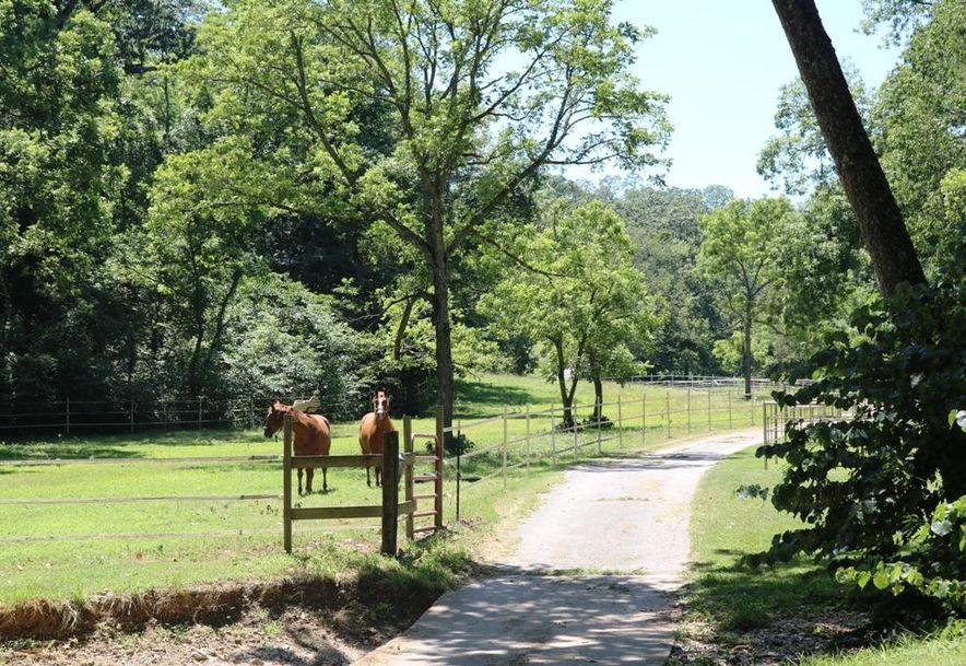 741 Pine Tree Drive Pineville, MO 64856 - Photo 49
