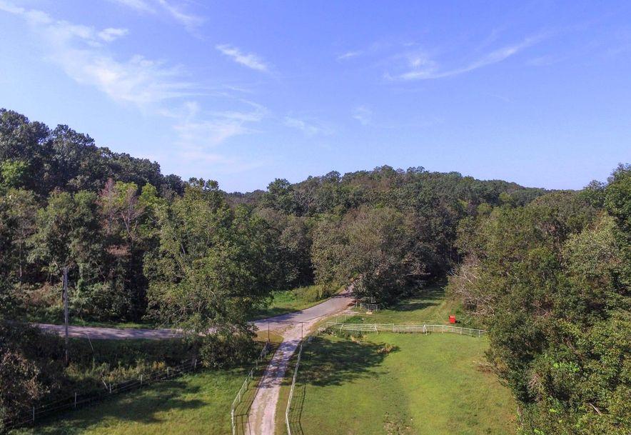 741 Pine Tree Drive Pineville, MO 64856 - Photo 6
