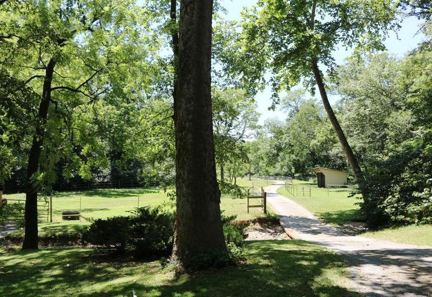 741 Pine Tree Drive Pineville, MO 64856 - Photo 52