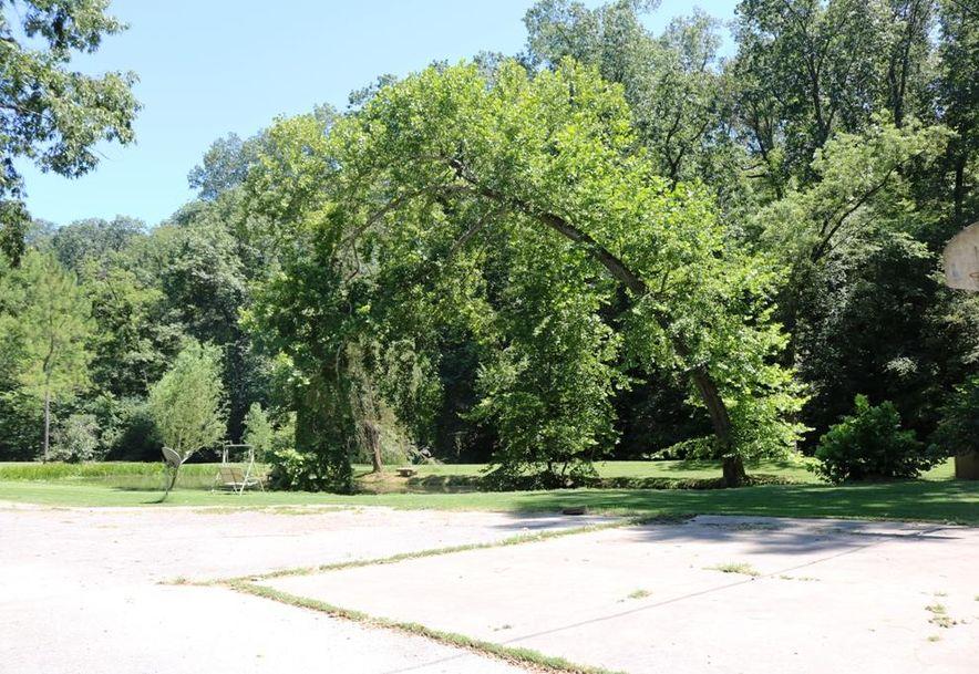 741 Pine Tree Drive Pineville, MO 64856 - Photo 53