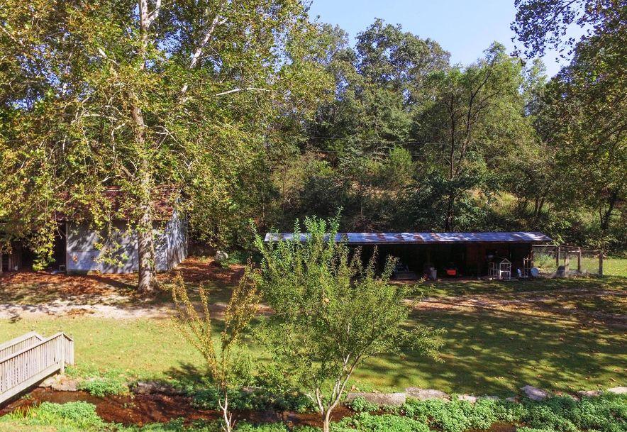741 Pine Tree Drive Pineville, MO 64856 - Photo 61