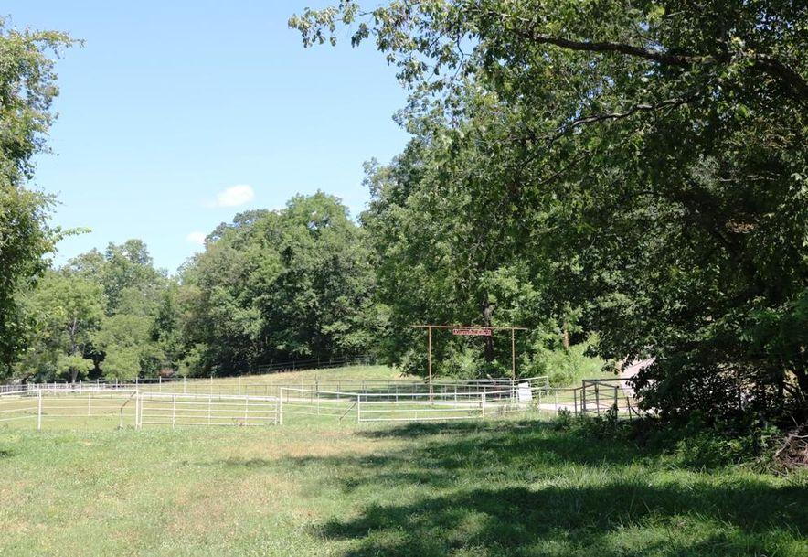 741 Pine Tree Drive Pineville, MO 64856 - Photo 63