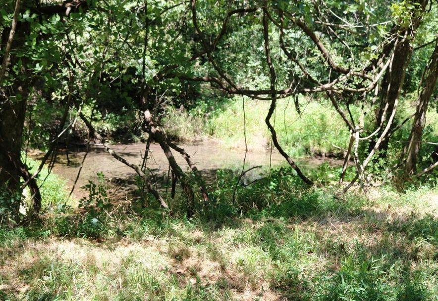 741 Pine Tree Drive Pineville, MO 64856 - Photo 64