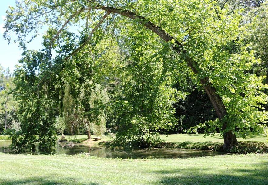 741 Pine Tree Drive Pineville, MO 64856 - Photo 8