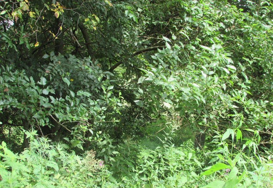 5364 County Road 30 Sarcoxie, MO 64862 - Photo 105