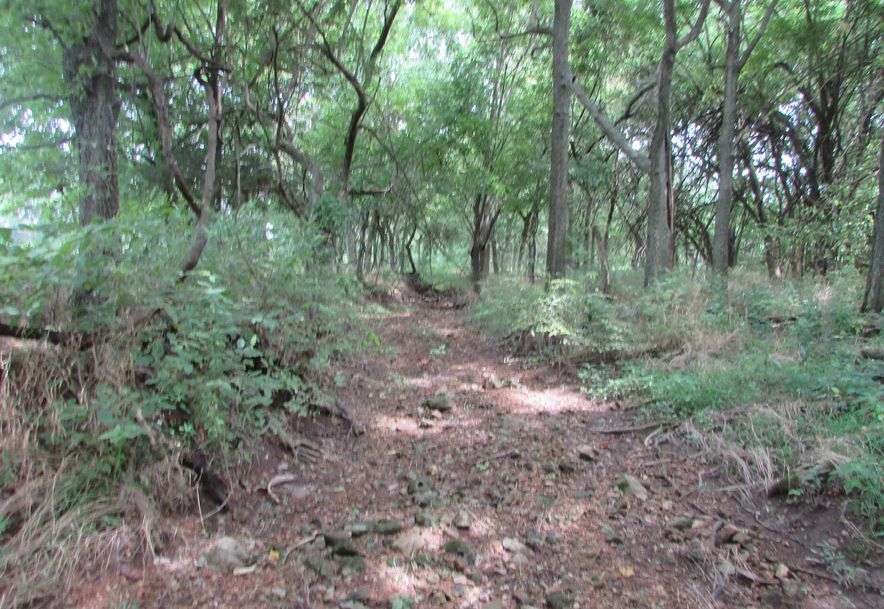 5364 County Road 30 Sarcoxie, MO 64862 - Photo 138