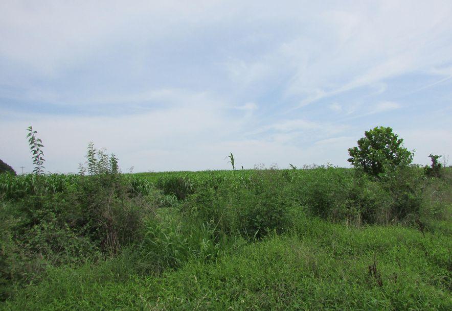 5364 County Road 30 Sarcoxie, MO 64862 - Photo 144