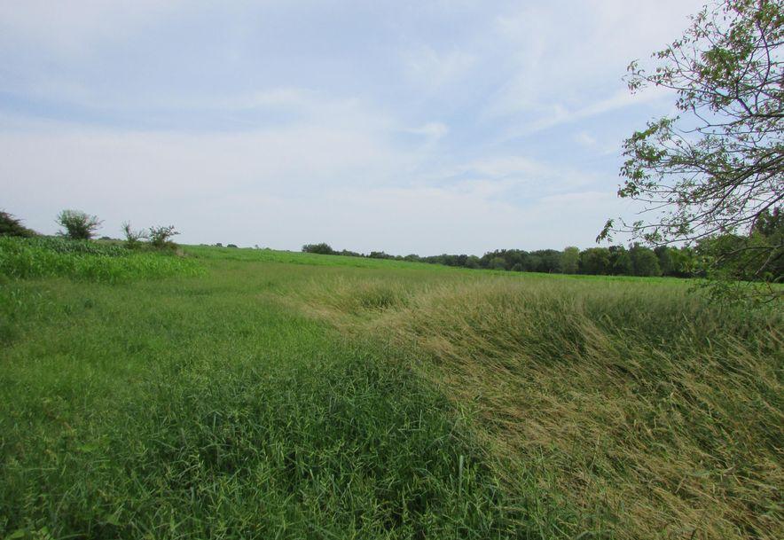 5364 County Road 30 Sarcoxie, MO 64862 - Photo 148