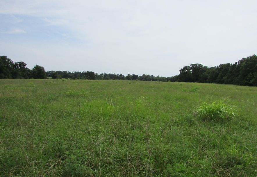 5364 County Road 30 Sarcoxie, MO 64862 - Photo 155