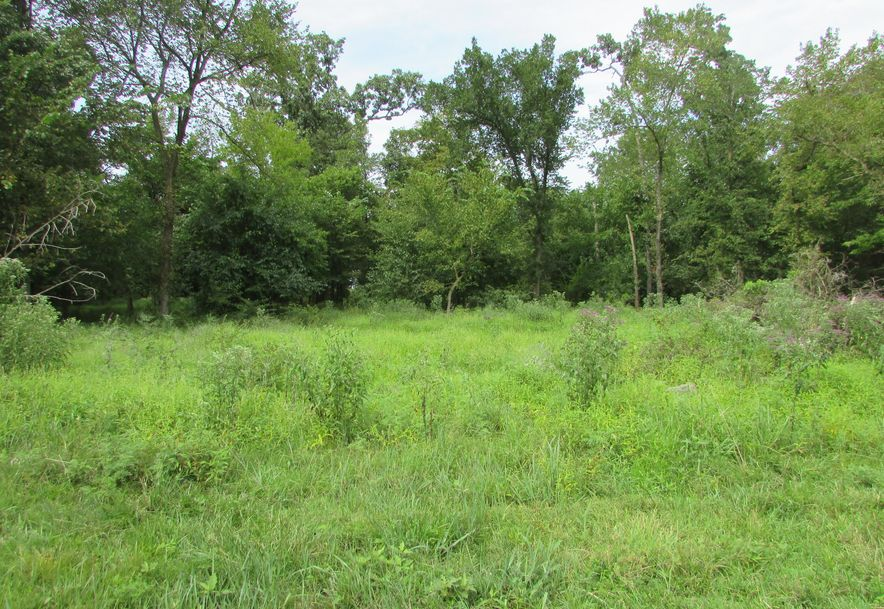5364 County Road 30 Sarcoxie, MO 64862 - Photo 163