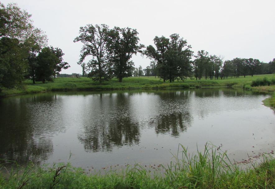 5364 County Road 30 Sarcoxie, MO 64862 - Photo 18