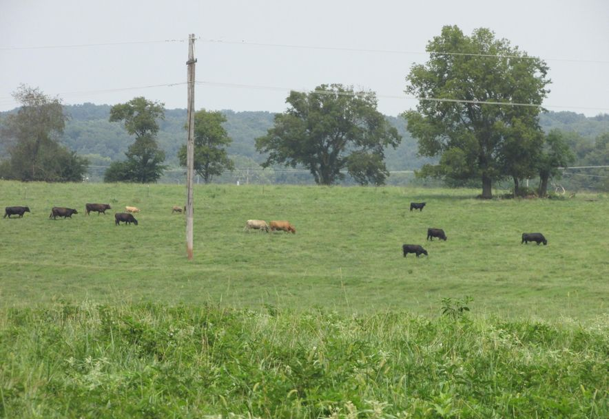 5364 County Road 30 Sarcoxie, MO 64862 - Photo 55