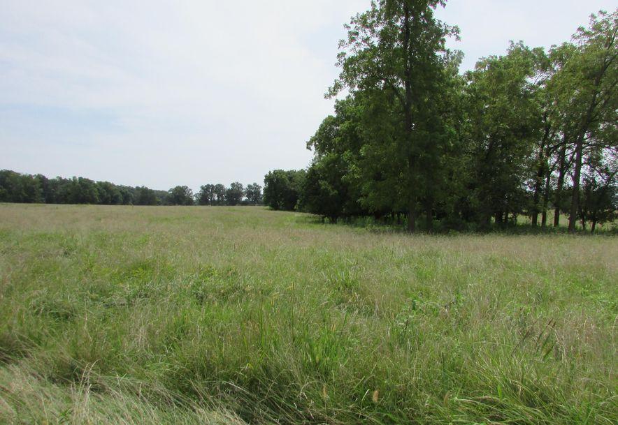 5364 County Road 30 Sarcoxie, MO 64862 - Photo 94