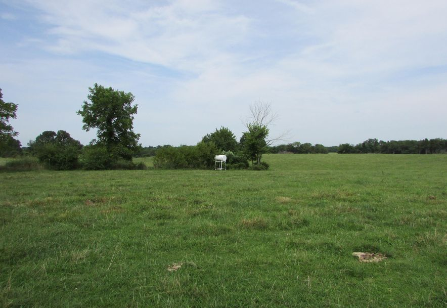 5364 County Road 30 Sarcoxie, MO 64862 - Photo 101