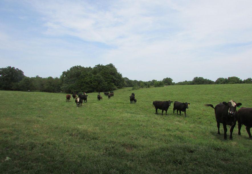 5364 County Road 30 Sarcoxie, MO 64862 - Photo 122
