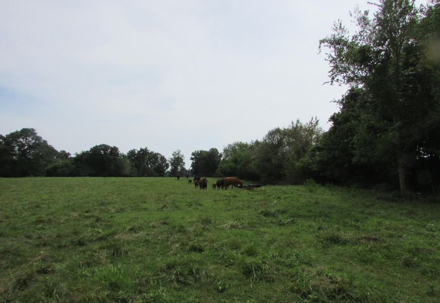 5364 County Road 30 Sarcoxie, MO 64862 - Photo 129