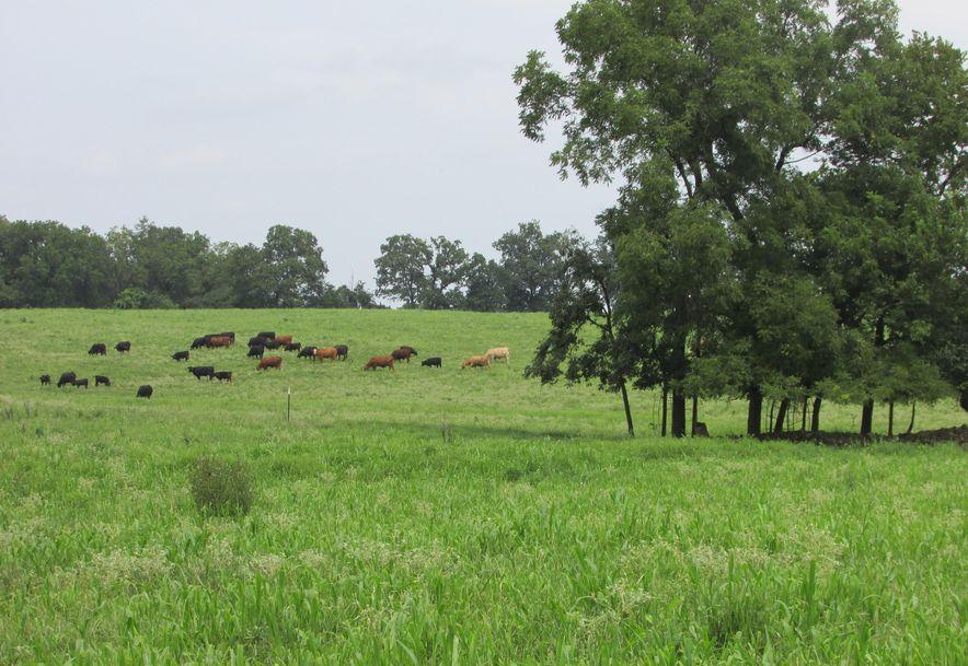 5364 County Road 30 Sarcoxie, MO 64862 - Photo 29