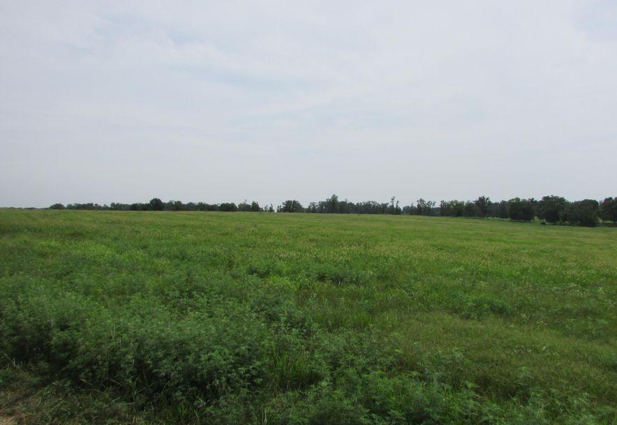5364 County Road 30 Sarcoxie, MO 64862 - Photo 36